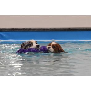 Chrisco Hund, 43 cm - vandlegetøj